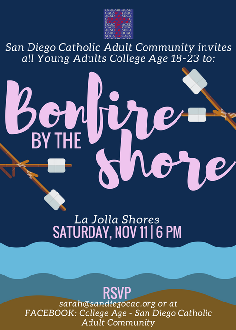 Young Adults College - Aged Catholics: Bonfire by the Shore