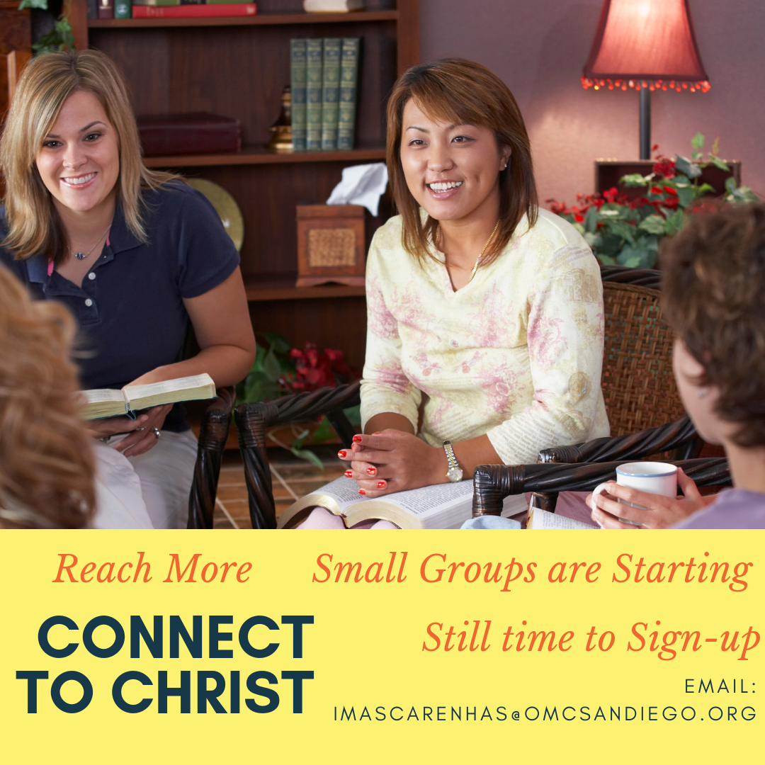 Sign up for Small Groups this week!