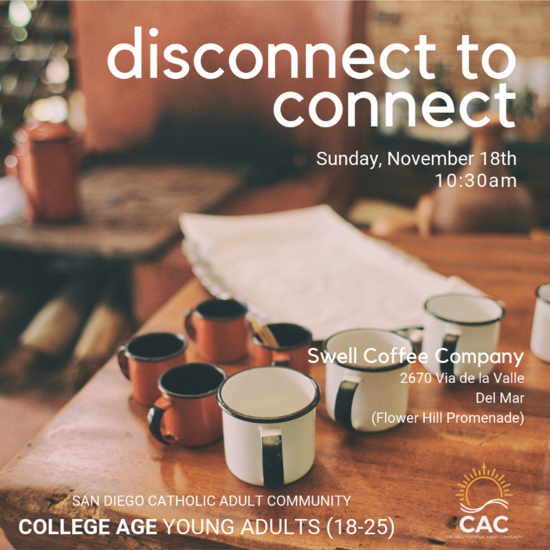 College Age Catholics Social: Disconnect to Connect