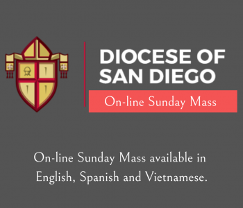 Diocese – online Sunday Mass