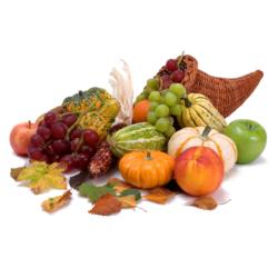 Thanksgiving Mass 9AM